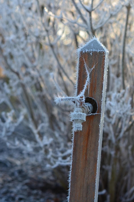 Common Winter Plumbing Issues to Avoid